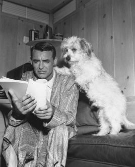 Cary Grant leyendo